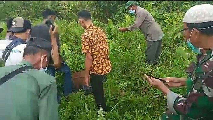 Beruang yang Ditangkap Warga Kuala Baru Dilepas ke Hutan Rawa Singkil, Induknya Masih Kabur