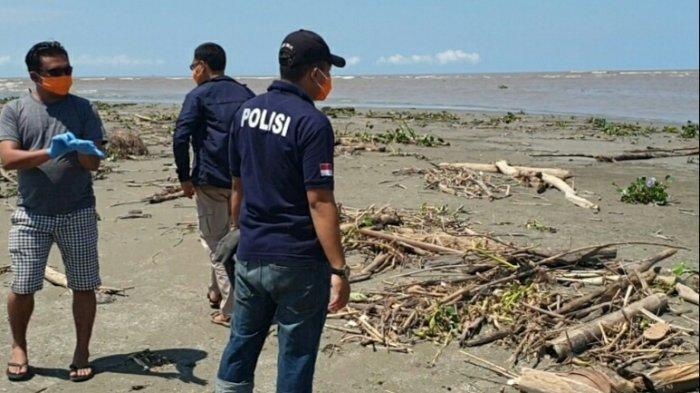 Terkait Bangkai Babi di Sungai, Wabup: Masyarakat Aceh Singkil tak Perlu Khawatir Konsumsi Ikan