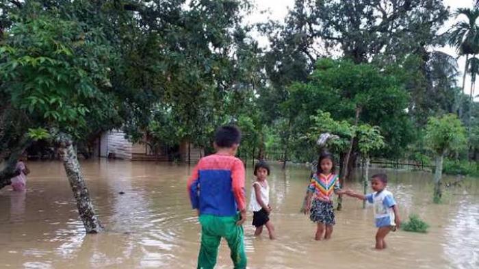 Pandrah dan Jeunieb Banjir, Ratusan Hektare Sawah Tergenang