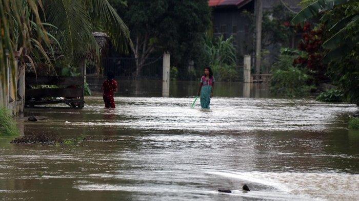 Ratusan Hektare Areal Sawah di Matangkuli dan Pirak Timu Masih Terendam Banjir