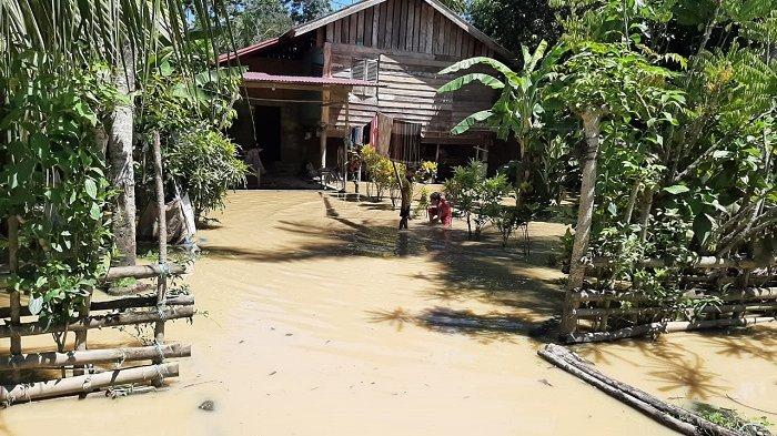 Krueng Keureuto Meluap, Lima Desa di Aceh Utara Kembali Terendam Banjir