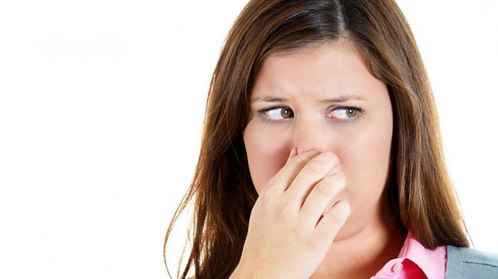 Cara Mudah Menghilangkan Bau Badan dan Bau Mulut ala dr Zaidul Akbar, Dianjurkan Makan Dua Bahan Ini