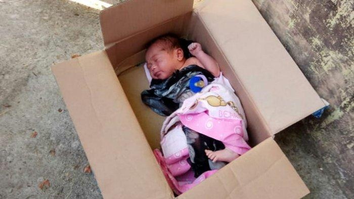 Heboh, Bayi Baru Lahir Ini Dibuang Ibunya dalam Kardus di Pinggir Jalan, Digigit Semut tak Menangis