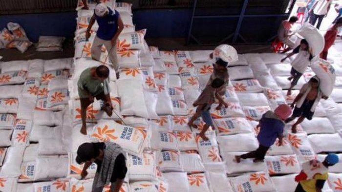 Pemerintah Berencana Impor Beras, HKTI: Hanya Merusak Harga Beras Petani Lokal