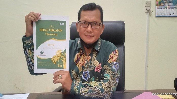 Aceh Tamiang Siapkan 500 Ha untuk Kembangkan Padi Organik