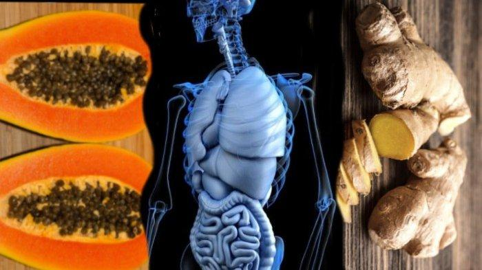 8 Buah dan Herbal untuk Mengatasi Gangguan Pencernaan