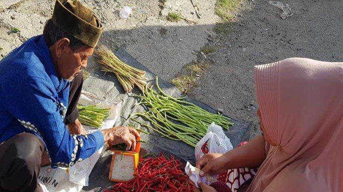 Petani Mulai Memasuki Musim Panen, Harga Cabai Merah di Pidie Turun Tipis