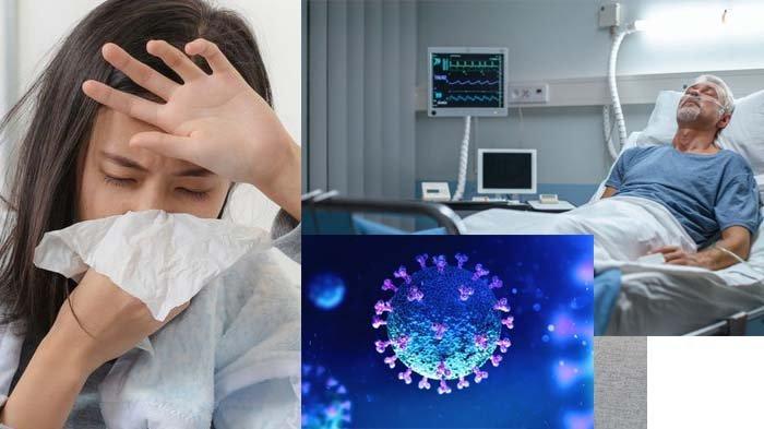 Ini Cara Membedakan Virus Corona dengan Flu