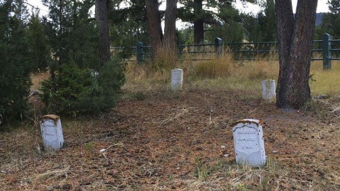 Seorang Pria Gali Kuburan Untuk Mencari Harta Karun, Terancam Hukuman 12 Tahun Penjara