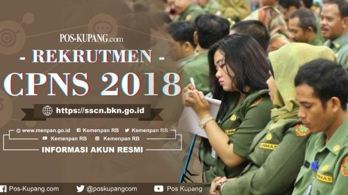 CPNS 2018 - Bingung Syarat Pengiriman Berkas Pendaftaran CPNS? Simak Penjelasan Kemenpan RB