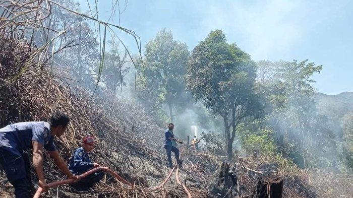 Awal Oktober 2021, 6 Hektare Lahan Terbakar di Bener Meriah