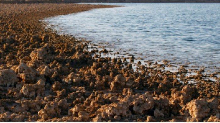 Danau Gurun di Irak Menyusut Secara Misterius dan Terancam Hilang Jadi Daratan