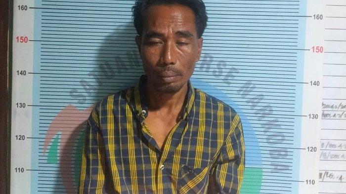 Polres Pidie Jaya Tangkap Din Teror, Diduga Edar Ganja, 2 Pria Lain juga Ditangkap Kasus Ganja