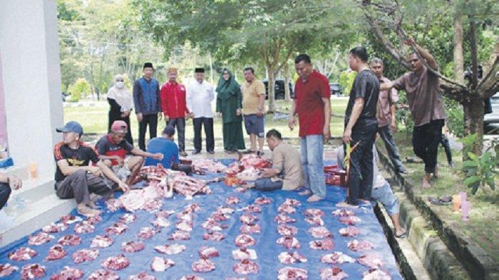 Rajut Kebersamaan, Sekretariat dan Anggota DPRK Aceh Tamiang Kurban Bersama