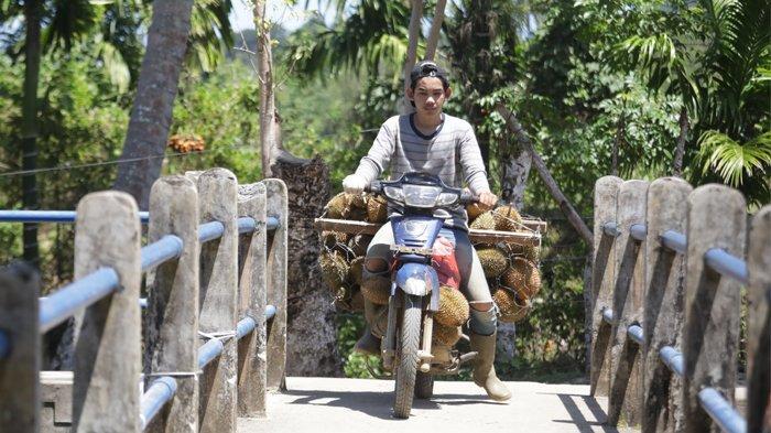 Warga membawa durian dari kebun di Kecamatan Lhoong Aceh Besar, Minggu (25/7/2021).