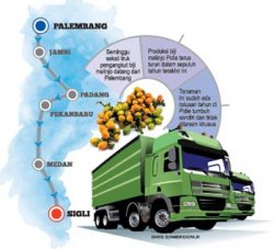 Pidie Diserbu Emping Palembang