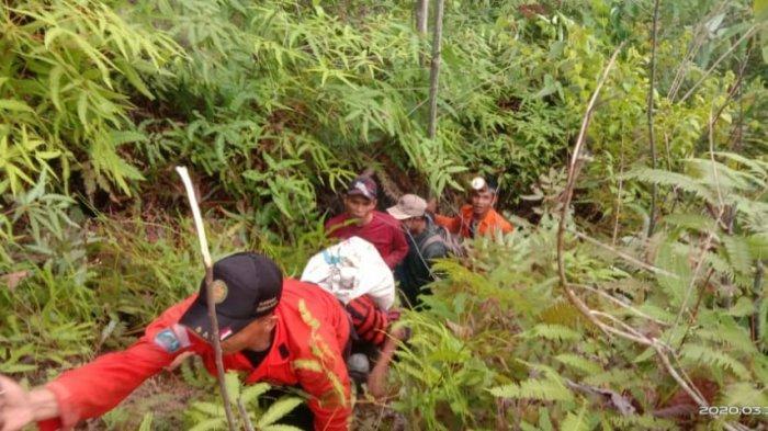 Kisah Ayah dan Anaknya Tersesat di Hutan Aceh Tamiang, Kehabisan Bekal dan Hanya Minum Air