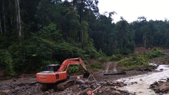 Penambang Emas Illegal Marak, Walhi Aceh: Hutan Geumpang Mengkhawatirkan