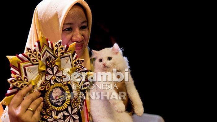 FOTO-FOTO: Puluhan Kucing Cantik dari Berbagai Ras Ikut Festival di Taman Budaya Banda Aceh - festival-kucing-2019-13.jpg