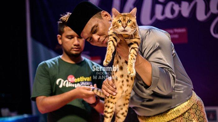 FOTO-FOTO: Puluhan Kucing Cantik dari Berbagai Ras Ikut Festival di Taman Budaya Banda Aceh - festival-kucing-2019-14.jpg