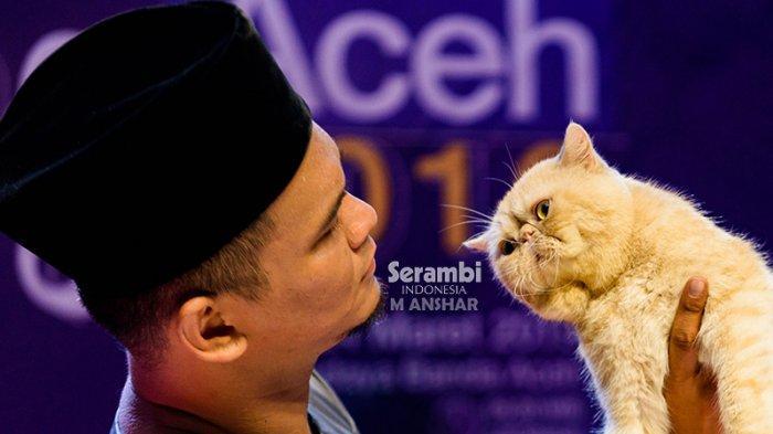 FOTO-FOTO: Puluhan Kucing Cantik dari Berbagai Ras Ikut Festival di Taman Budaya Banda Aceh - festival-kucing-2019-3.jpg