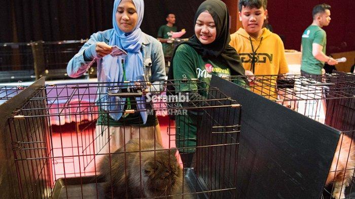 FOTO-FOTO: Puluhan Kucing Cantik dari Berbagai Ras Ikut Festival di Taman Budaya Banda Aceh - festival-kucing-2019-8.jpg