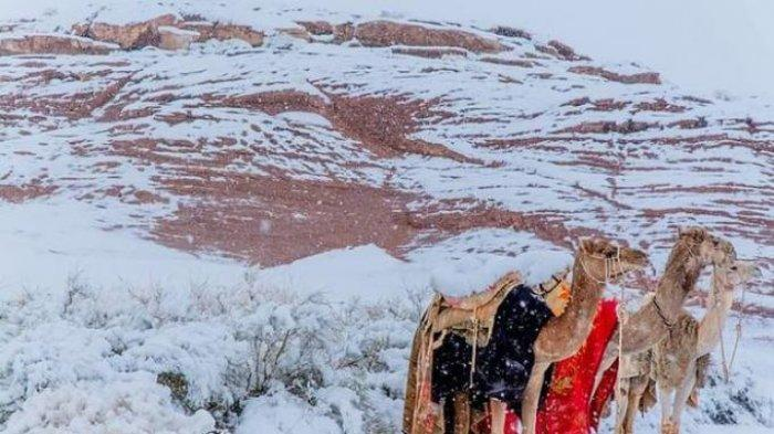 Gurun Sahara dan Arab Saudi Hujan Salju, Ini Penjelasan NASA