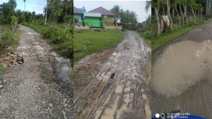 Siaran Langsung dari Ceurih Gampong Aree, Warga Minta Pemerintah Bangun Jalan