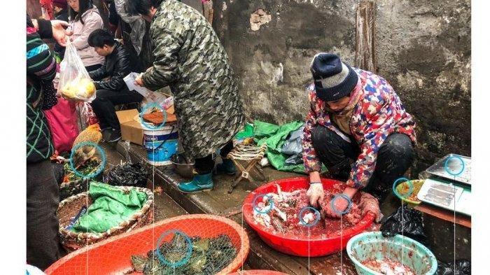 Diduga Kuat Jadi Tempat Virus Corona Berasal, Ini Foto-foto Lokasi Pasar Tradisional Kota Wuhan