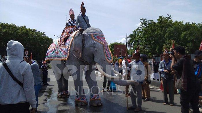Gajah Putih dari Kerajaan Linge Melintasi Masjid Raya Baiturrahman