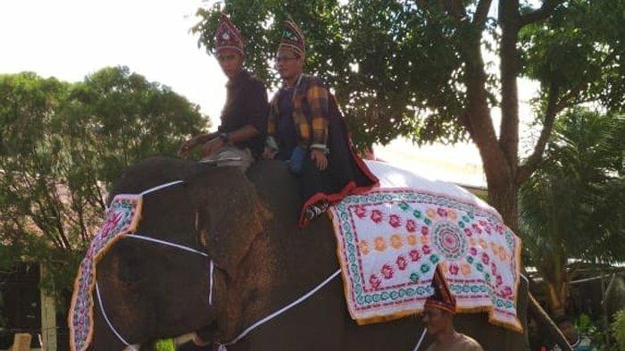 Gajah Putih dan Bendera Kerajaan Linge Ramaikan Pawai PKA