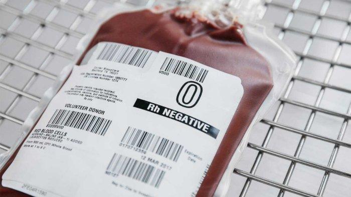 Fakta Soal Golongan Darah yang Tak Banyak Diketahui, Bisa Berdampak pada Kecocokan & Kesehatan