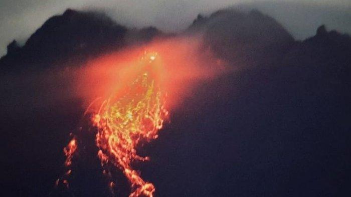 Sepekan,Gunung Merapi Luncurkan Lava Pijar 128 Kali, Terjauh 900 Meter