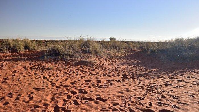 5 Misteri Dunia yang Belum Terpecahkan, Peradaban Hilang di Gurun Kalahari hingga Tapak Kaki Raksasa