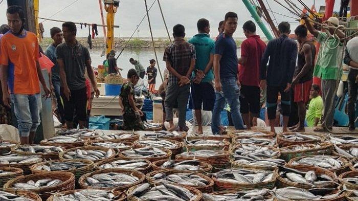 Tangkapan Nelayan Berkurang, Harga Ikan Naik, Ini Harga Grosir dan Eceran di PPS Lampulo Banda Aceh