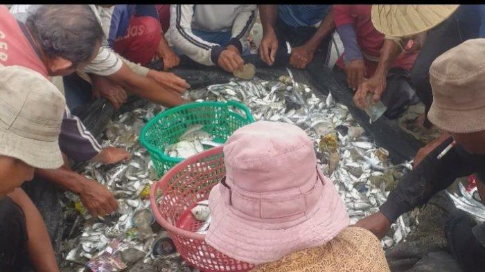 Pukat Darat Masih Menjadi Andalan Nelayan Tradisional Bireuen Walaupun Hasil Tangkapan Sedikit