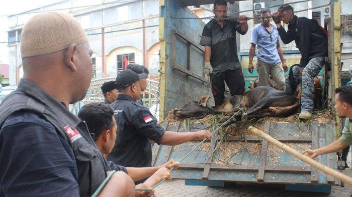 ACT Aceh Sembelih 1.000 Lebih Hewan Kurban dan Sajikan Hidangan untuk Disantap Bersama