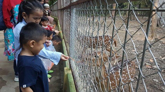 Wisatawan Lokal dan Luar Daerah Pilih Hutan Kota Langsa Isi Liburan Sekolah