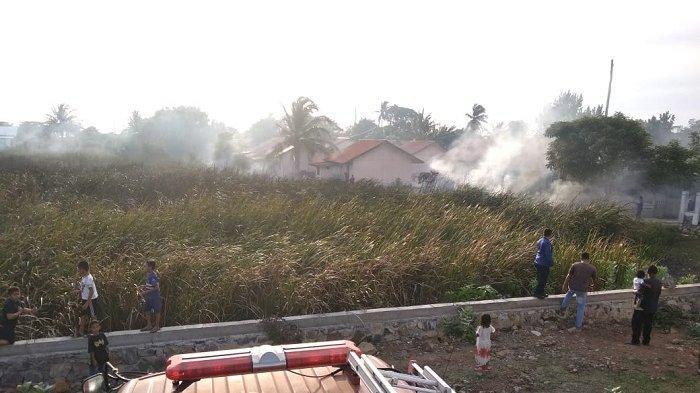 Kebakaran Ilalang di Deah Raya Nyaris Menjalar ke Permukiman Warga
