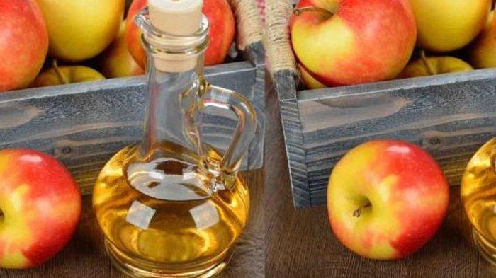 Amankah Ibu Hamil Minum Cuka Apel? Simak Penjelasan dr Zaidul Akbar Lengkap dengan Tips Konsumsinya