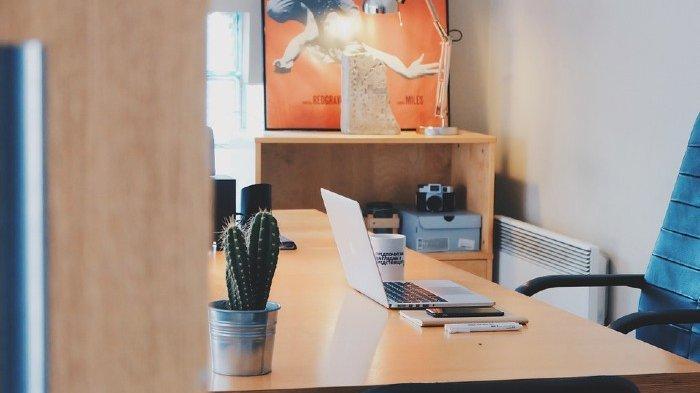 8 Tips Dekorasi Kantor Kekinian, Bikin Karyawan Betah dan Mudah dapat Inspirasi