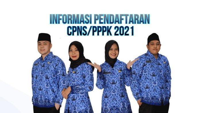 Dibuka Akhir Juni, Berikut Formasi CPNS 2021 Aceh Jaya, Ada 30 Formasi untuk Lulusan Ners