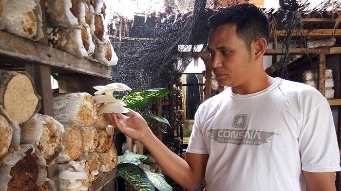 Jamur tiram krispi menu favorit di Cefe Mesenina di pusat kuliner Puja Sera, Singkil, Aceh Singkil, Senin (30/9/2019)