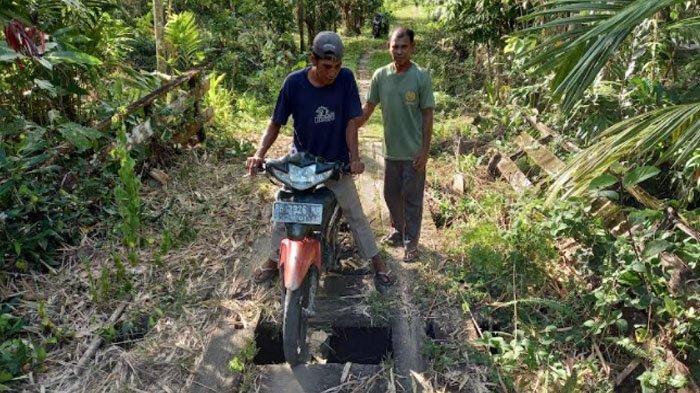 Lapuk dan Berlubang, Jembatan Penghubung Antar Desa di Simeulue Cut tak Bisa Lagi Dilalui Kenderaan