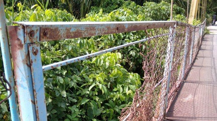 Jembatan Gantung Penghubung Kedai Kandang - Sialang Sudah Layak Direnovasi