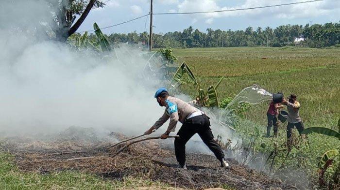 Gegara Pembakaran Jerami, Polisi di Kuta Malaka Sibuk Padamkan Api
