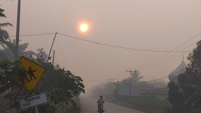 Kabut Asap Akibat Kebakaran Hutan Makin Parah di Bengkalis Riau, Warga Sesak Nafas