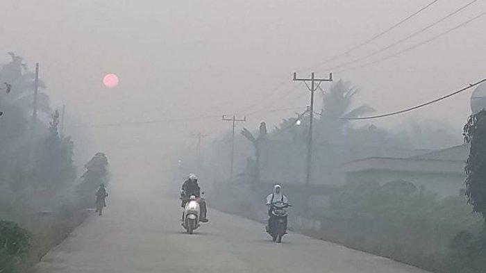BREAKING NEWS - Kabut Asap Landa Aceh Utara, Jarak Pandang Terbatas, Penerbangan akan Terganggu
