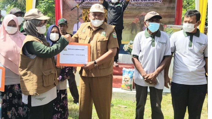 Distanbun Aceh Luncurkan Program Gepeuaman, Jaga Kesuburan Tanah dengan Pupuk Organik