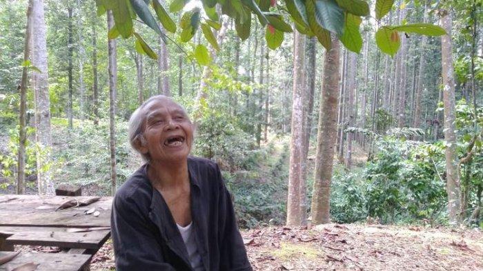 Kisah Kakek Suhendri Menolak Rp 10 Miliar Demi Jaga Hutan Buatannya, Ternyata Ini Alasannya